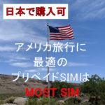 アメリカではMOST SIM_1